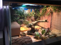 Bearded Dragon Heat Lamp Broke by Bearded Dragon Enclosure Bearded Dragon Cages Pinterest