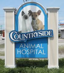 countryside animal hospital countryside animal hospital veterinarian in wilson nc usa home