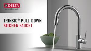 Delta Trinsic Kitchen Faucet by Delta Trinsic Single Handle Pull Down Sprayer Kitchen Faucet In