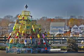 Stew Leonards Christmas Tree Hours by Our Best Photos November
