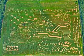 Pumpkin Patch Maryland by Coolest 2014 Maryland And Northern Virginia Corn Mazes Cbs Dc