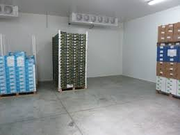 frigo chambre froide chambre froide pour fruits et legumes lzzy co