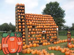 Punkin Chunkin Delaware Festival 2015 by Fun On The Farm For Fall Out U0026 About Magazine