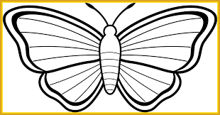 Coloring Page Butterfly Tiger Swallowtail Amazing Line Drawing Butterflies At Getdrawings For Personal