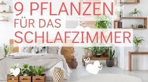 besser schlafen mit 9 pflanzen im schlafzimmer für mehr sauerstoff und bessere luft in der nacht