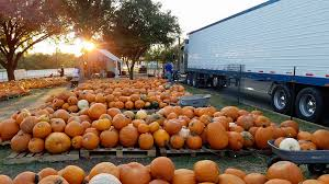 Pumpkin Patch Bastrop County by 10 Ways To Celebrate The Fall Season With Attractions In The