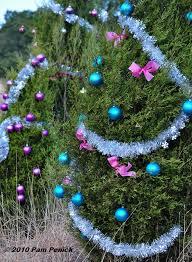 Mysterious Elves Decorate Loop 360 Christmas Trees
