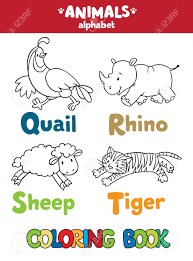 Coloring Book Or Picture Of Funny Quail Rhino Sheep And Tiger Animals