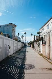 Beautiful Palm Street California Iphone Wallpaper