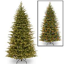 National Tree 75 Foot Nordic Spruce Slim Pre Lit Christmas With Dual Color