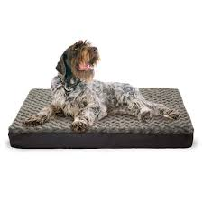 FurHaven Cooling Gel Memory Foam Dog Bed Free Shipping Orders