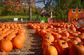 North Lawrence Pumpkin Patch by U Pick Farms In Westchester And The Hudson Valley
