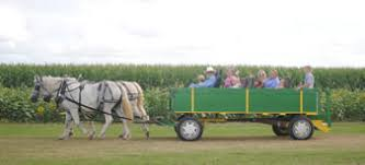 Pumpkin Patches In Arkansas by Northeast Arkansas Pumpkin Patches Corn Mazes Hayrides And More