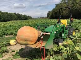 Pumpkin Farm Illinois Best by The 10 Best Pumpkin Patches In Illinois 2016
