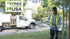 UC Davis Named Tree Campus U.S.A. For 8 Years Straight   UC Davis ... Bottled Water Hackney Beverage Tanker Services In Hyderabad In Rental Classified Smiths Delivery Aftermath What Happens Once The Water Recedes News On Tap Contact Us Garys Truck Filebayport New York Fire Department Rescue Truckjpg Vacuum For Industrial Cleaning Applications Filecountry Service Bulk Carrier And Pumper Tanker Ccfr Apparatus Types Bruckner Sales Twitter Enid Professional Michael Blasting Powerclean