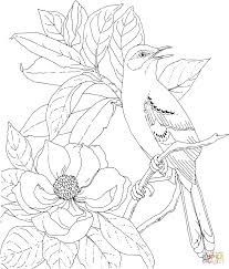Click The Mockingbird And Magnolia Mississippi State Bird Flower Coloring Pages To View Printable