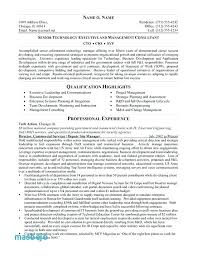 Technical Resume Writer Example For Study Best Samples