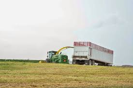 Little House On The Dairy: Rye Silage Grain Silage Trucks For Sale Corn Silage Packing Time Lapse Case And John Deere B3 Farms Truck Driver Life On The Ranch Collins Family Silage Cy Harvesting 1976 Mack R600 Grain Farm Truck For Sale Auction Or Lease Intertional Wrecker Tow Trucks N Trailer Magazine 2006 Intertional Eagle 9200i Truck Item Dx9084 Oat Harvest 2013 What Goes Around Comes Mgaret Duarte Desert Survivor Bagging