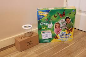 Insect Lore Live Butterfly Garden Unboxing & Setting Up