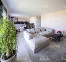 wohnzimmer und küche im offenen raum moderne wohnung stockfoto und mehr bilder architektur