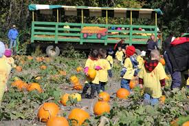 Free Pumpkin Farms In Wisconsin by Fun And Educational Tours Basse U0027s Taste Of Country Farm