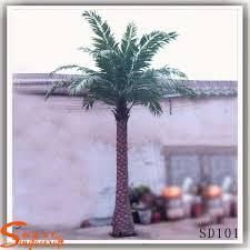 prix des palmiers exterieur meilleur date prix de palmiers de décoration jardin date palmiers