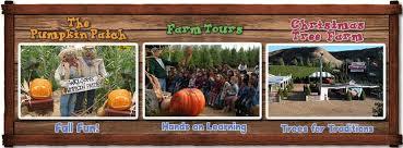 Oak Glen Pumpkin Patch Yucaipa live oak canyon pumpkin patch and christmas tree farm home