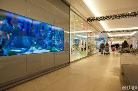 living aquarium lebensechtes virtuelles aquarium vertigo
