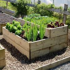 Raised Vegetable Beds Are Simple To Make And Easy Maintain Use This Method