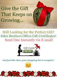 Save [25% Off] By Using Eden Brothers Coupons & Promo Codes 25 Off Exotic Metal Works Coupons Promo Discount Codes Affordable Essential Oils Diy For Beginers With Edens Garden Prime Natural Spicy Saver Oil Blend 10ml Get W Skinmedix Coupon Discount Codes Fyvor Peeps And Company Coupon Energy Ogre Code 2019 Of Eden Zulily February Oreilly Auto Parts Hard Candy Promo Black Friday 5 Ways To Use Allergies