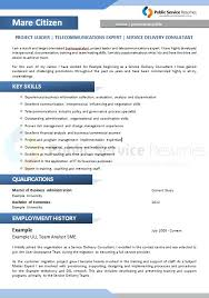 Professional Resume 094 Public Service