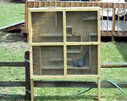 Squirrel Feeder Adirondack Chair by Squirrels Are Smart Make A Maze To Challenge Them Mentally Diy