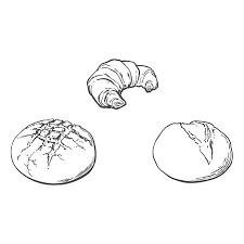 Vector Sketch Fresh White Loaf Bread French Baguette Set Detailed