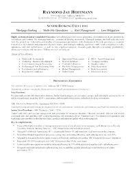 Bank Executive Jobs In Bangalore Sample Resume For Job Application Resum