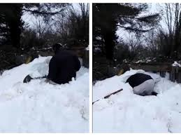 WATCH Dramatic Footage Of Farmer Digging For Sheep Buried By Snow Drift In Offaly