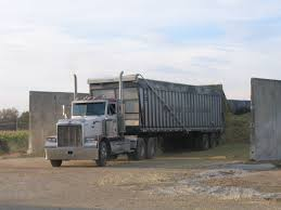 100 Silage Trucks Agriculture