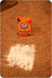 How To Fix Bleach Stains On Carpet by Others How To Removing Paint From Carpet At Your Home