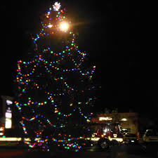 Ticks On Christmas Trees 2015 by About Our Organization