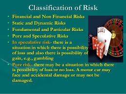 Dynamic Value Annual Financial Risk Risk Management In Insurance Sector
