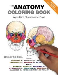 Kapit Anatomy Coloring Dental Book Free Download With Best Of