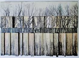 Stephen Walling Landscape Photograph