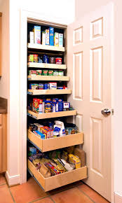Fascinating Pantry Design Ideas Built In Kitchen Storage Brown Wooden Sliding Shelves Single Door Cabinet Modern New 2017