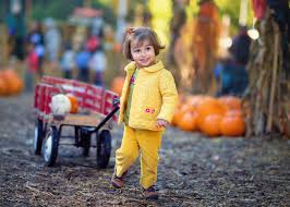 Best Atlanta Pumpkin Patch by Best Photographic Pumpkin Patches In Orange County Cbs Los Angeles