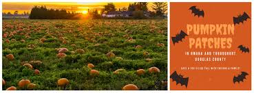 Omaha Pumpkin Patch by Where To Pick Pumpkins In Omaha Ne