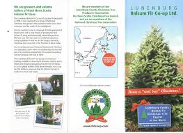 Christmas Tree Saplings Ireland by Meet Our Wholesale Producers Canadian Christmas Tree Growers