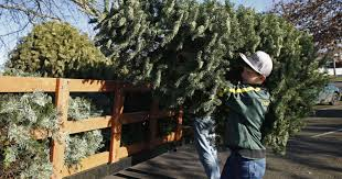 Christmas Tree Farm Lincoln Nebraska by Area Groups Want To Take Christmas Tree Off Your Hands
