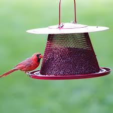 Perky Pet Cardinal Wild Bird Feeder Red Chewy