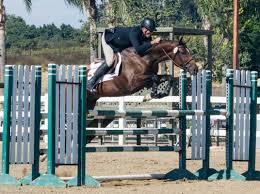 Sales Barn - KIMBERLEE FARMS Autumn Hills Farm Pin By 21 Days Diet Plan On Horses Pinterest Horse Hunter Hunters Jumpers Equitation Equestrian Hillmar Farm Welcome Beckett Run Inc About Us News Alabama Association Corrstone Huntjumper Traing Barn In Modesto And Saratoga Holiday Giving Equestrian Style The Peeps Foundation Is The 744 Best Hunter Jumpershow Jumping Images Florida Jumper Show Barns Med Kennedy Grove Stables Tommi Clark Chosenbrook Show Jumper Sale
