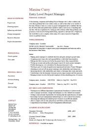 100 Resume Summary Examples Entry Level Level Project Manager Resume Example CV Junior Management