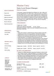 Entry Level Project Manager Resume Example CV Junior Management Program